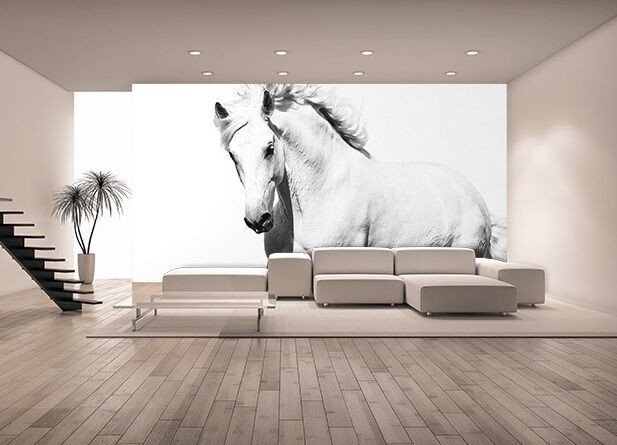 Horse Decor for Living Room Awesome Wallpaper Mural Photo White Horse Mustang Giant Wall Decor