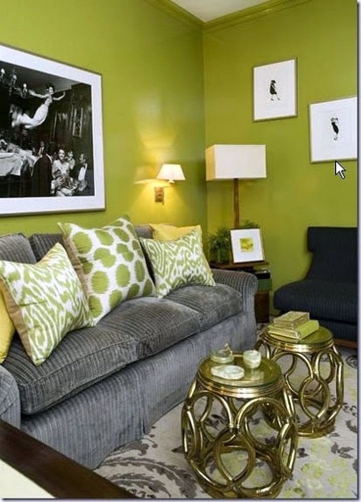 Lime Green Living Room Decor Best Of 18 Lovely Grey and Green Living Room Ideas