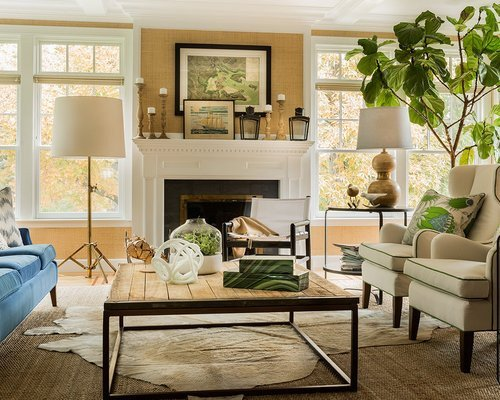 Pictures for Living Room Decor Inspirational Transitional Living Room Home Design Ideas